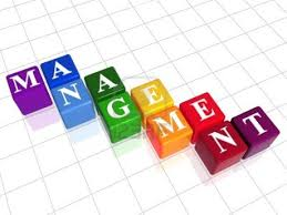 Image result for management images